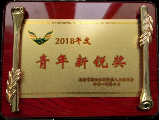 2018年公司总经理廖小青荣获市新联会《青年新锐奖》